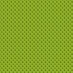 Lime 025