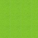 Lime 022