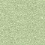 Green Natural 021
